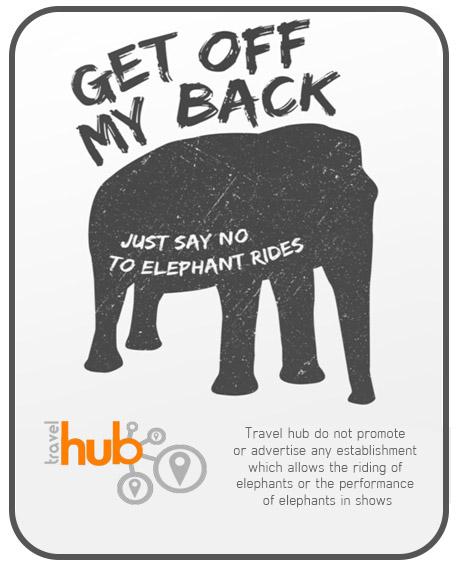 no elephant riding banner